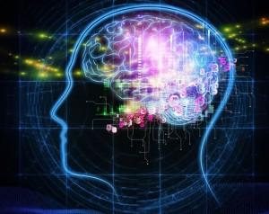Brain RV
