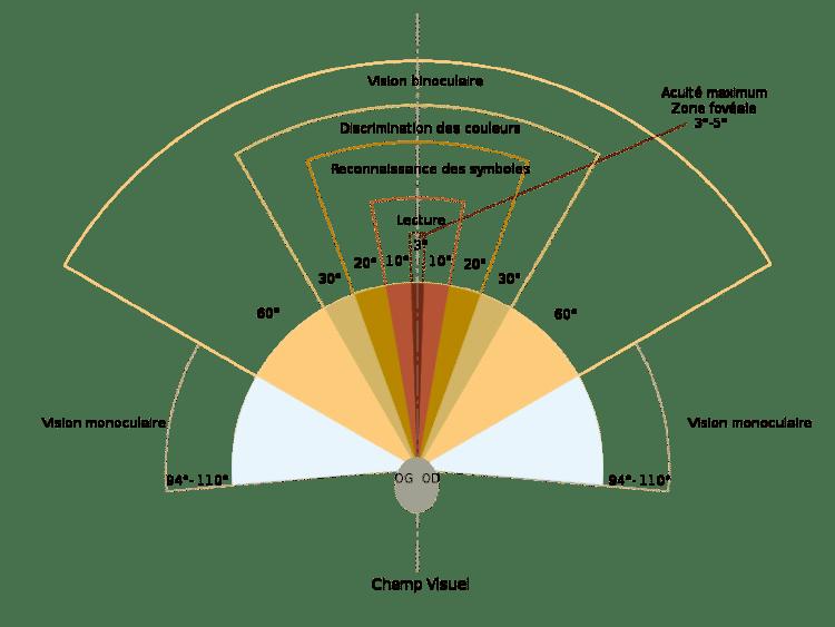 Le fonctionnement du champ de vision ou FOV centre optique