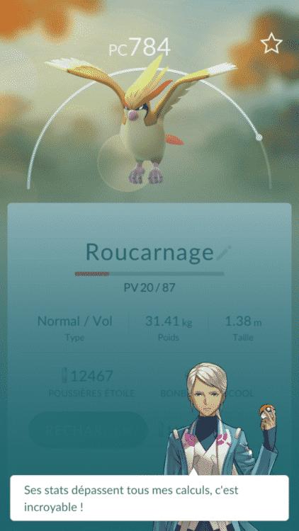 roucarnage-iv
