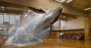 magic leap réalité augmentée réalité mixte