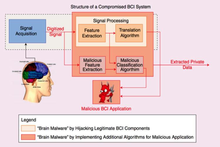 Pirater cerveau humain hacker pensées