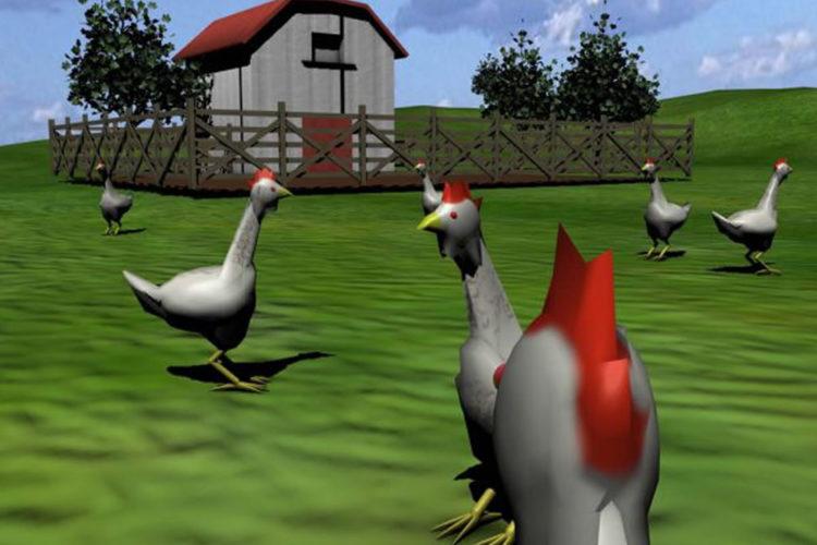 Poulets élevages intensifs casque réalité virtuelle second life