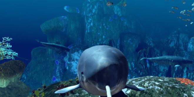 Océanopolis Brest expérience VR réalité virtuelle