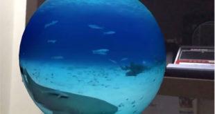 Vidéo 360 degrés orbe flottant salon