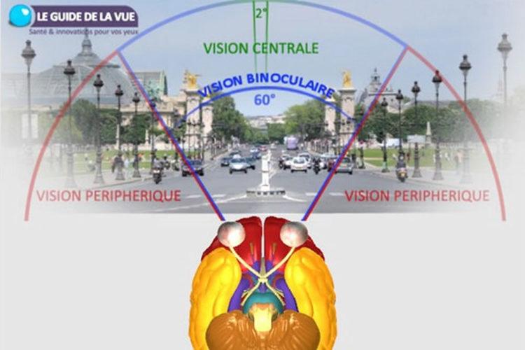 Eye Tracking VR