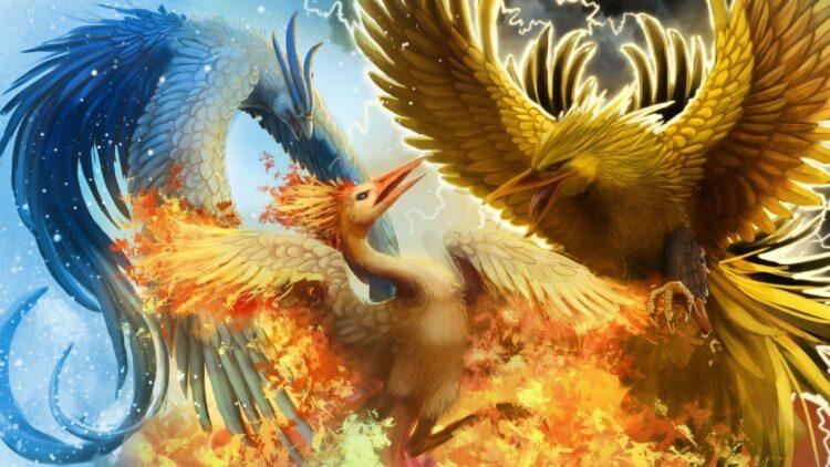 pokémon trio oiseaux