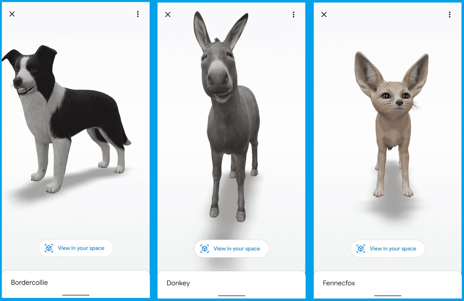 animaux 3D Google